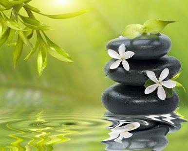 Vaincrelaleucemie zen for Salon toilettage zen attitude